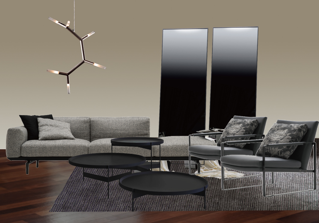 apartment potts point contemporary chic camerich sofa mirrors rug collection christopher boots meizai prostoria coffee table mood board inspiration xavier hinde interiors interior design sydney australia